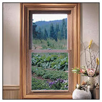 taylor door 5300 series windows, residential double hung windows